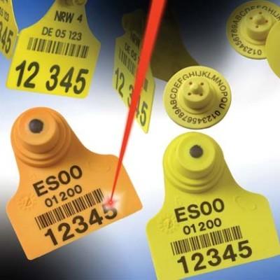 Tại sao máy khắc laser Fiber được xem là giải pháp công nghiệp hữu hiệu nhất hiện nay
